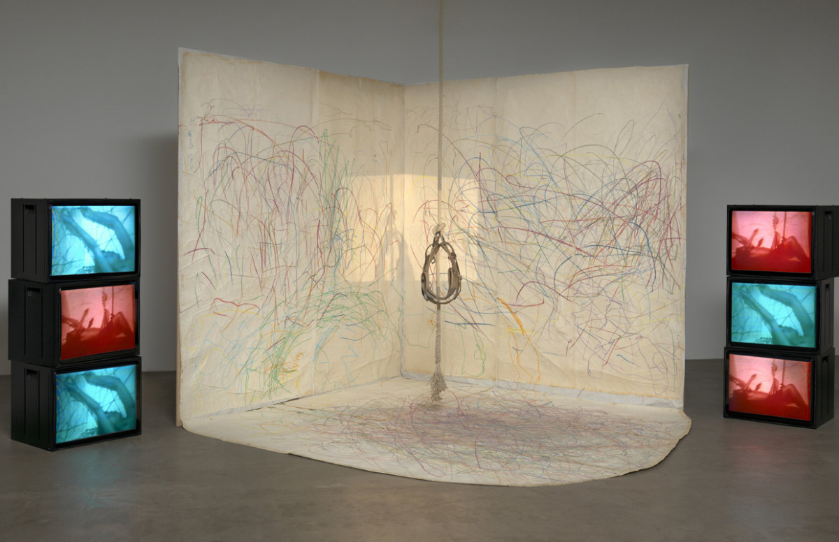 CAROLEE SCHNEEMANN : KINETIC PAINTING